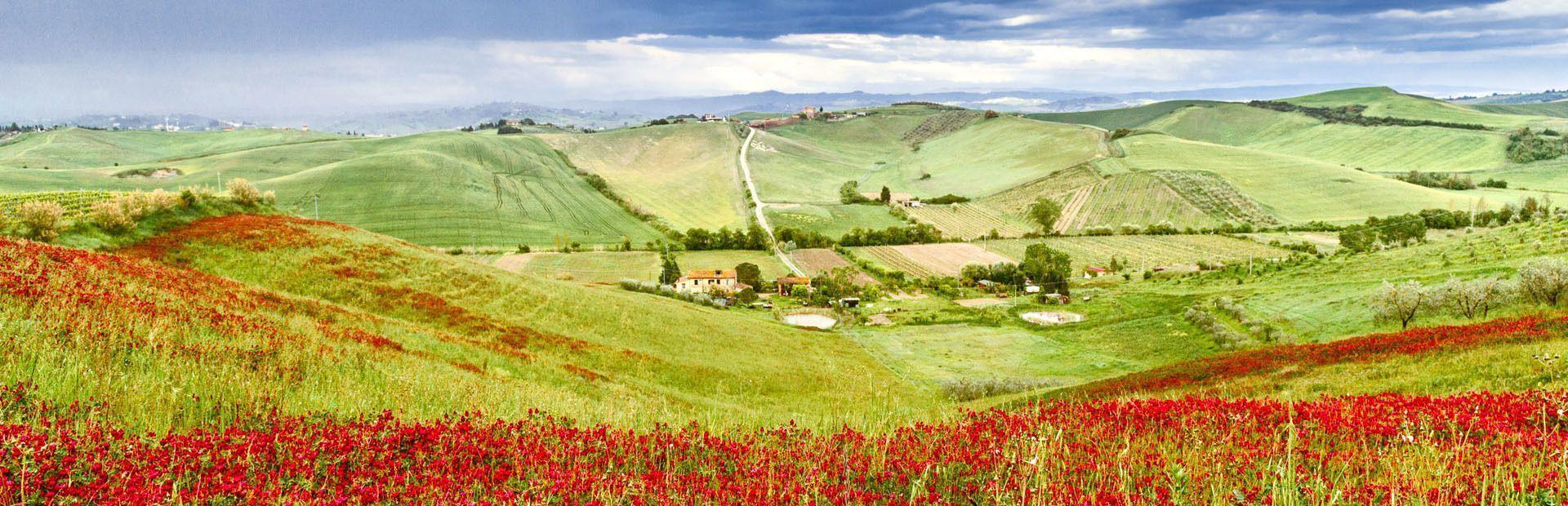 Via Francigena: in cammino da Siena a Viterbo