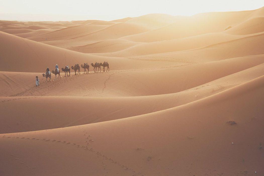 Marruecos: del desierto a la ciudad de las mil y una noches