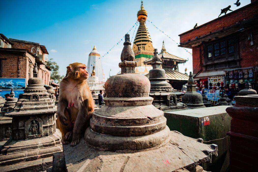 Nepal 360°